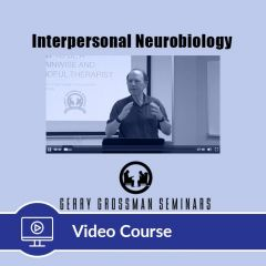 5-Hour CE Interpersonal Neurobiology Video Course